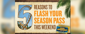 5 Reasons to Flash Your Pass