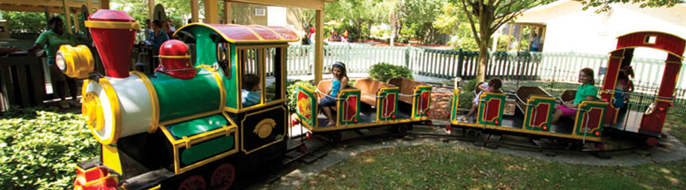 Base Camp Safari Train