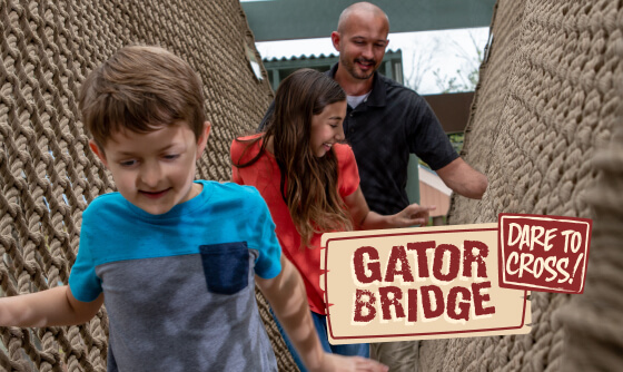 Gator Bridge