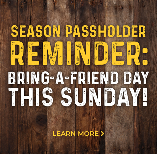 Bring-A-Friend This Sunday!